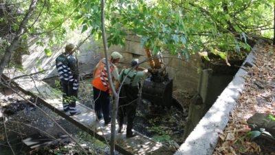 У Дніпрі річку перетворюють на сміттєзвалище (Фото)