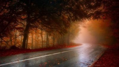 туман погода