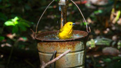 вода кран запас