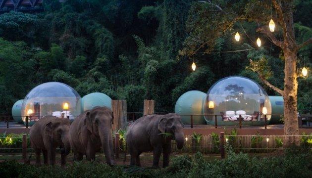 Таїланд_слони