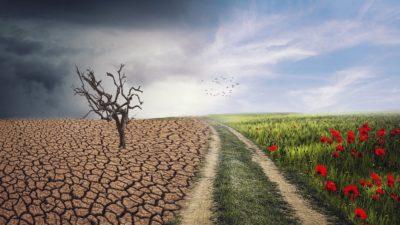 ООН: 2020-й будет годом экстремальных погодных явлений