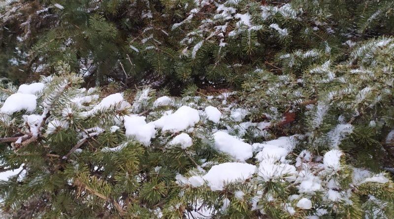 погода Днепр снег
