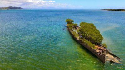 судно_мангровый лес