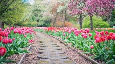 весна погода