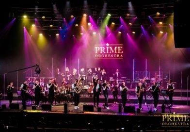 «Prime Orchestra»: «Креативный подход к работе рождает креативные отношения в коллективе»