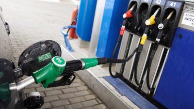 Каждый 5-й литр бензина – фальсификат: как ликвидировать теневой рынок топлива