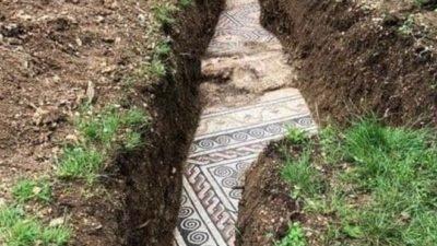 Під виноградником знайшли давньоримську мозаїку