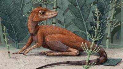 предки динозавра