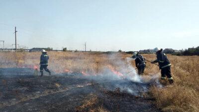 У Павлограді з вогню врятували крихітне життя (Фото)