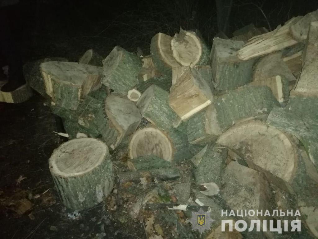 вантажівка з дровами