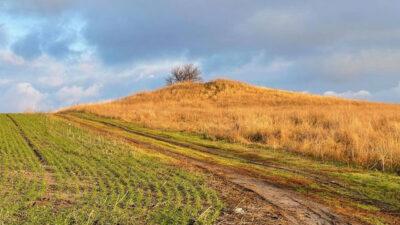 древний курган_Днепропетровская область