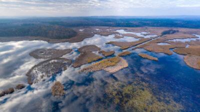 Google оцифровала еще 10 национальных природных парков Украины