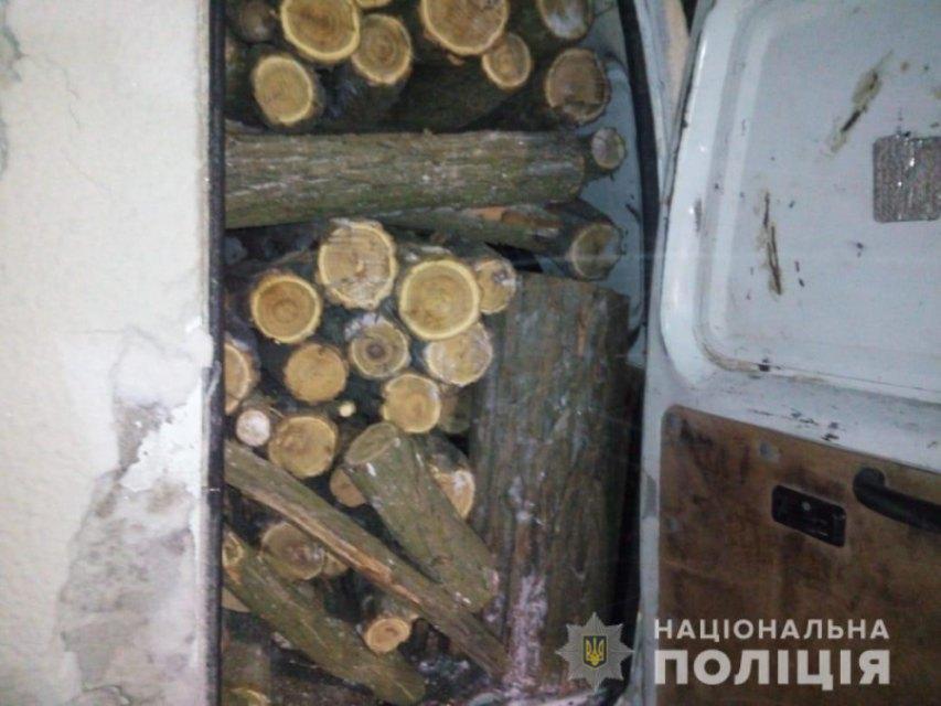 вырубка деревьев_Никопольский район
