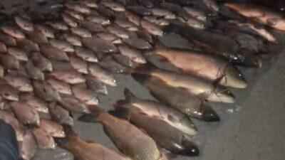 У Дніпропетровській області затримали браконьєрів