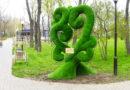 дерево счастья_Покров