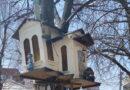 домики на дереве_Днепр