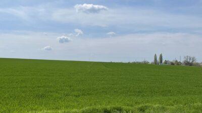 У липні відкривається ринок землі: правила і ціна