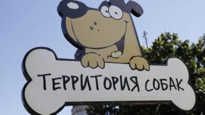площадка для выгула собак_Днепр