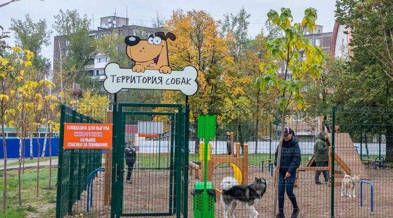 майданчик для вигулу собак_Дніпро