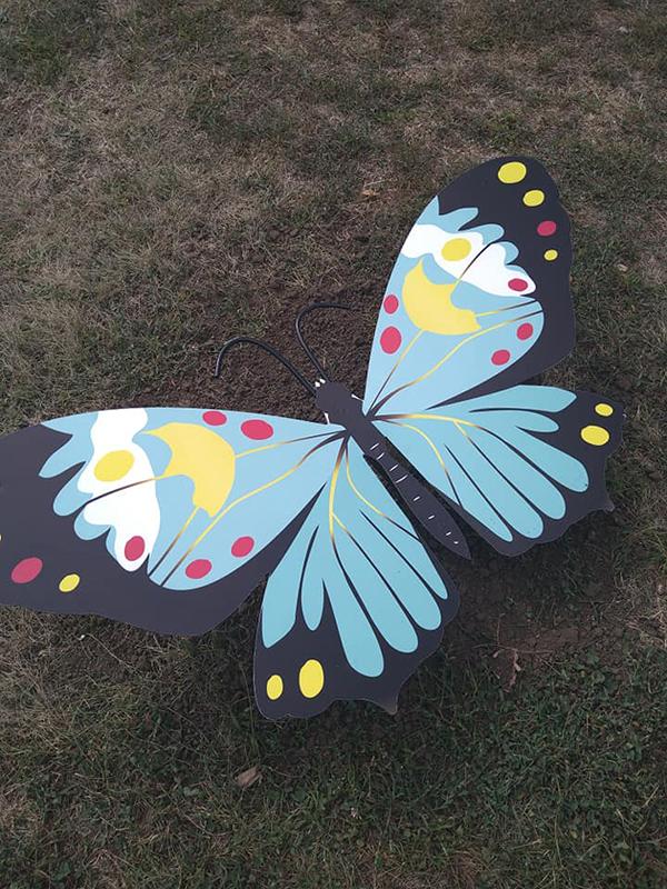 бабочки в парке Героев_Кривой Рог