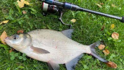 фестиваль рыбной ловли