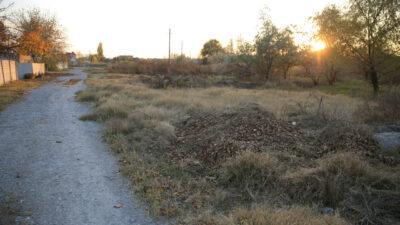 В Днепре штрафуют за сжигание опавших листьев и сухой травы (фото)