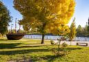 центральный парк Новомосковска_зарядка